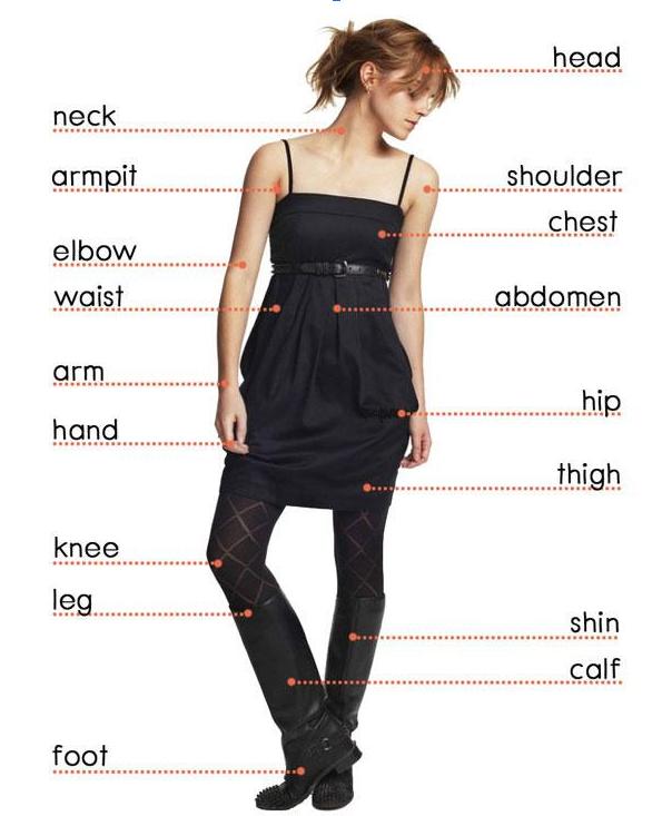 части тела на английском в картинках